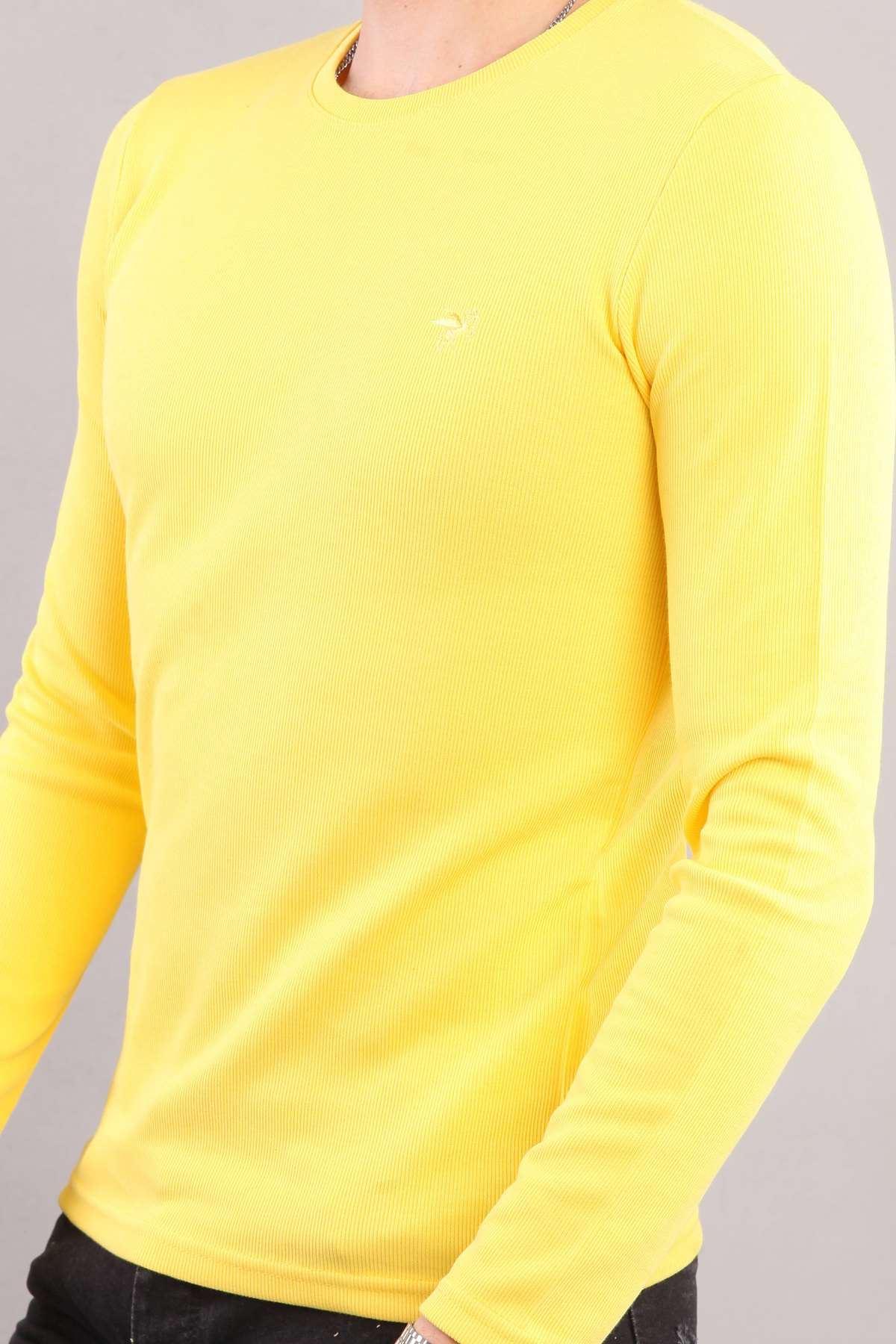 Bisiklet Yaka Sweatshırt Sarı
